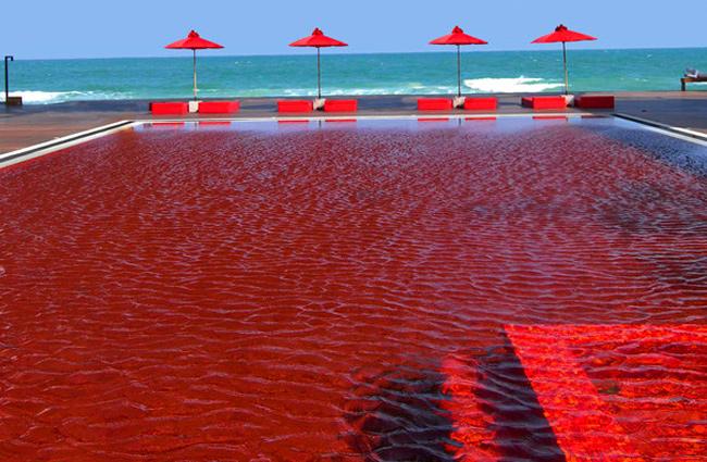 interesting-swimming-pools-19
