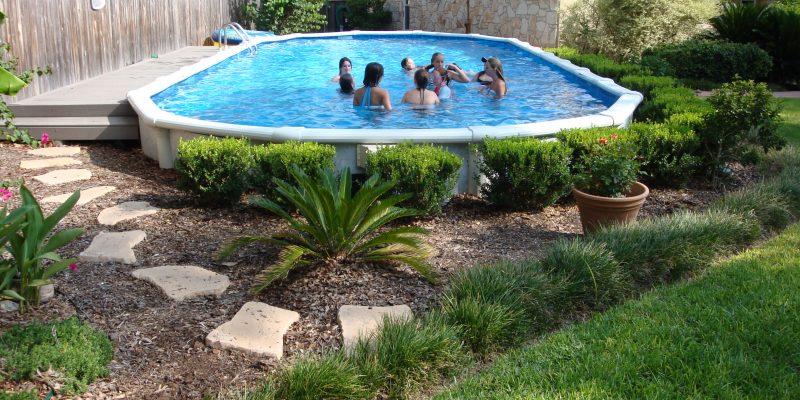 Decorative Shrubbery around pool