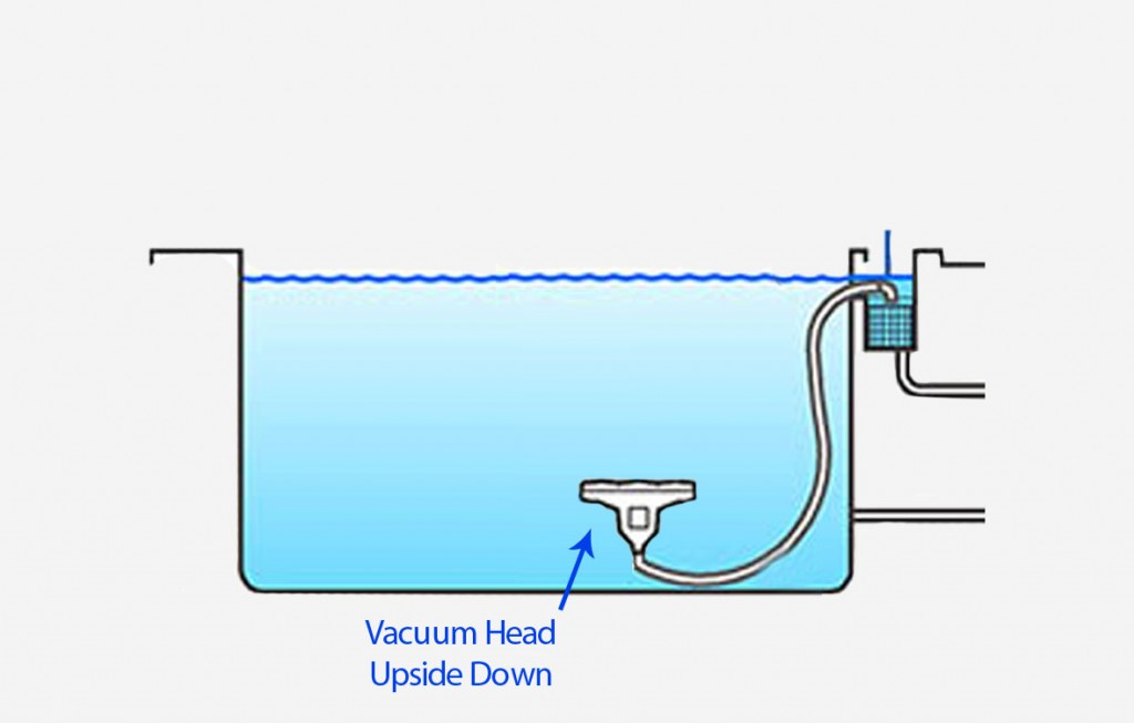 Vacuum Head Diagram for Saltwater Above Ground Pools