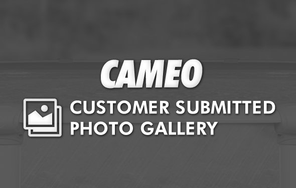 Cameo Pool Gallery