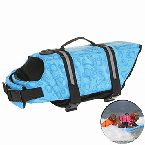 dog-swimsuit-life-vest
