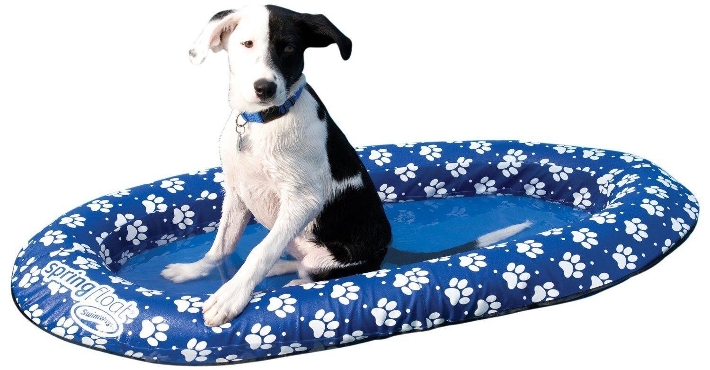 paws-dog-float