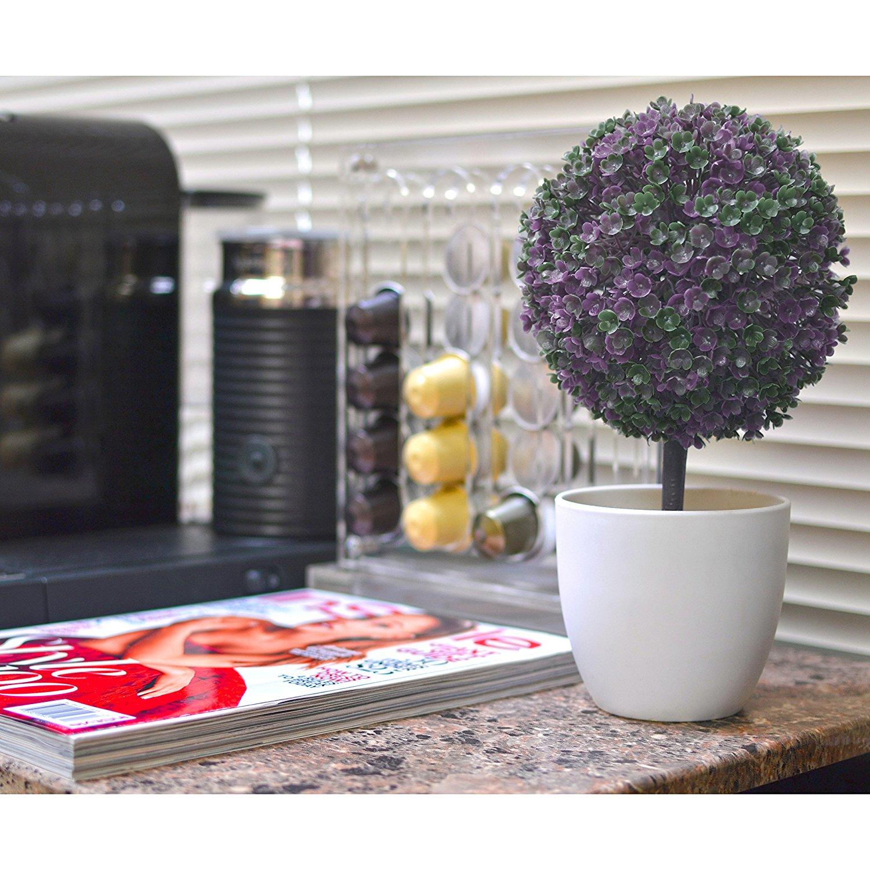 tabletop-flower-plant