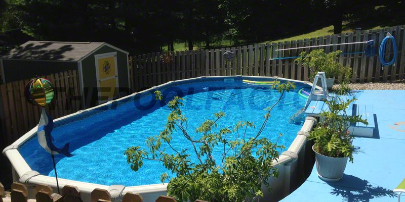 above-ground-pools-steve-o-06